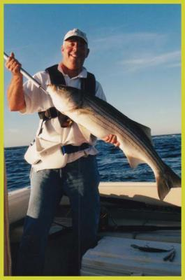Sportfishing Cape Cod
